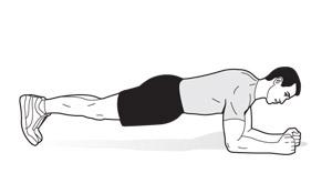 plank-diagram
